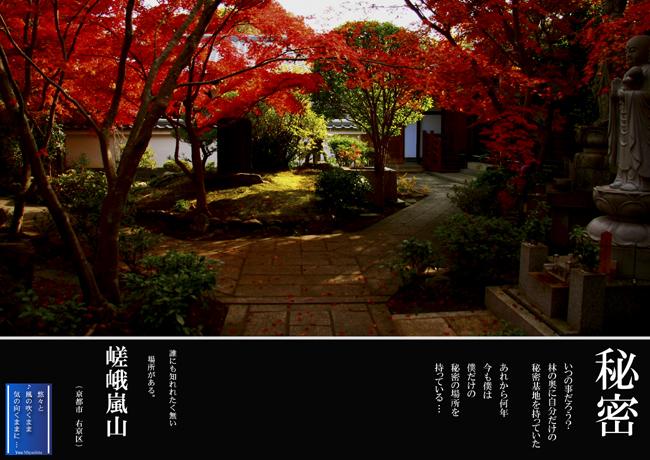 嵐山so.jpg